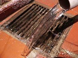 Superior Problems Caused By Clogged Floor Drains: